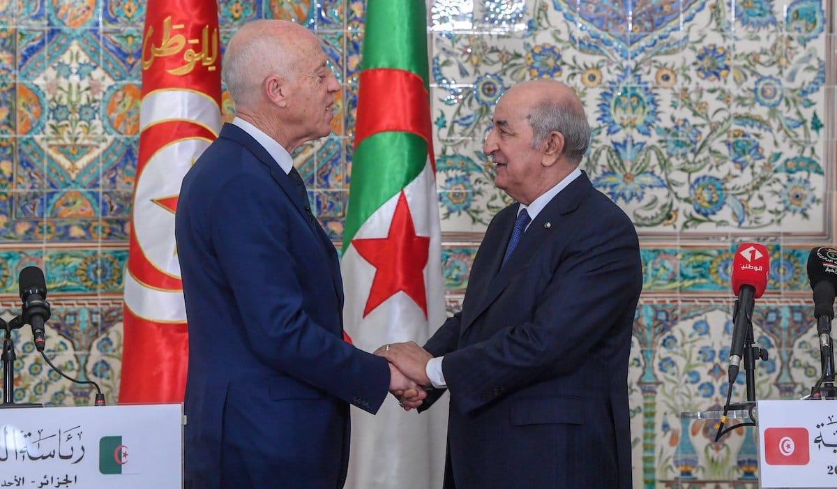 Libia, i timori di Algeri e Tunisi