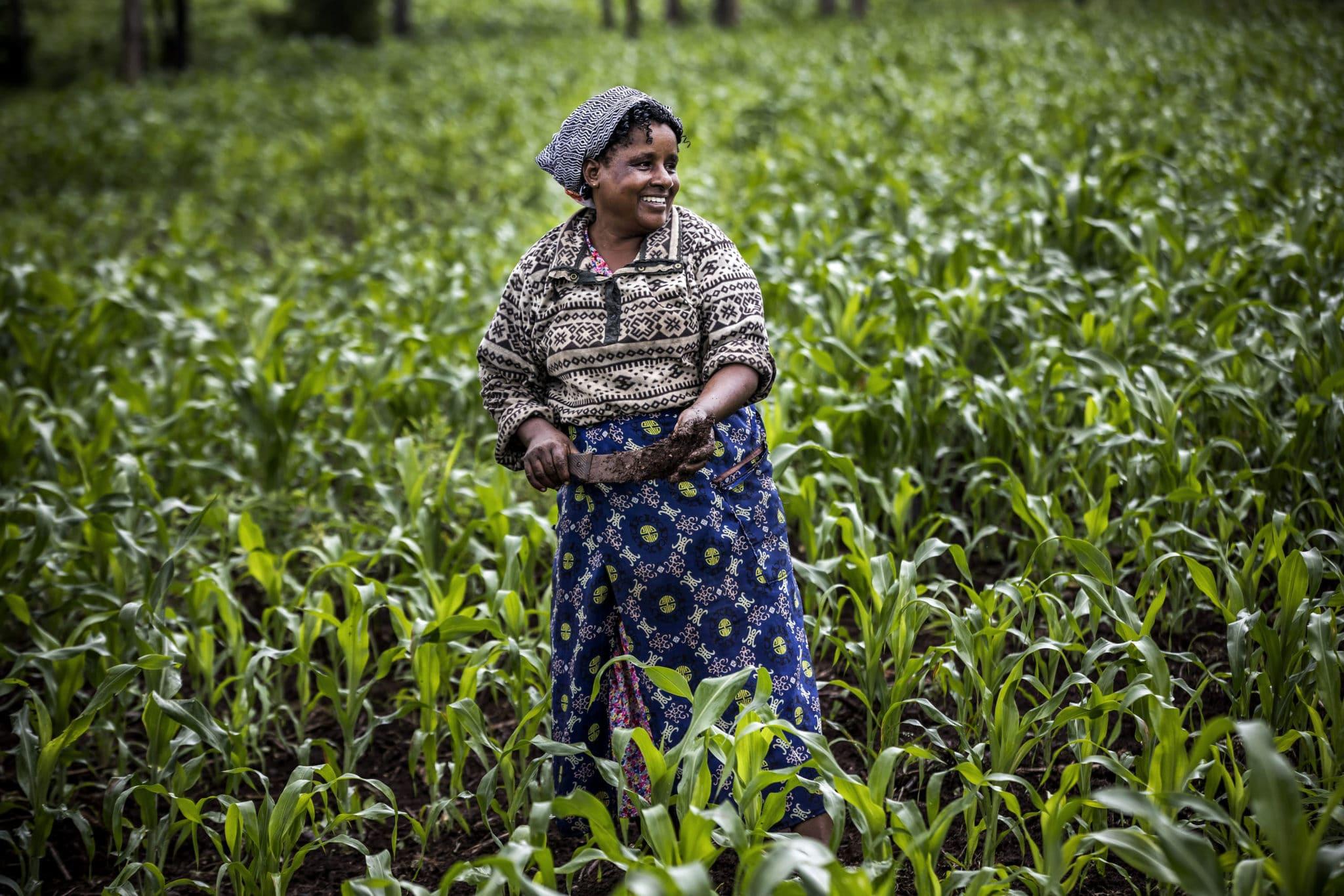 Africa: l'emergenza agricoltura non è più rinviabile