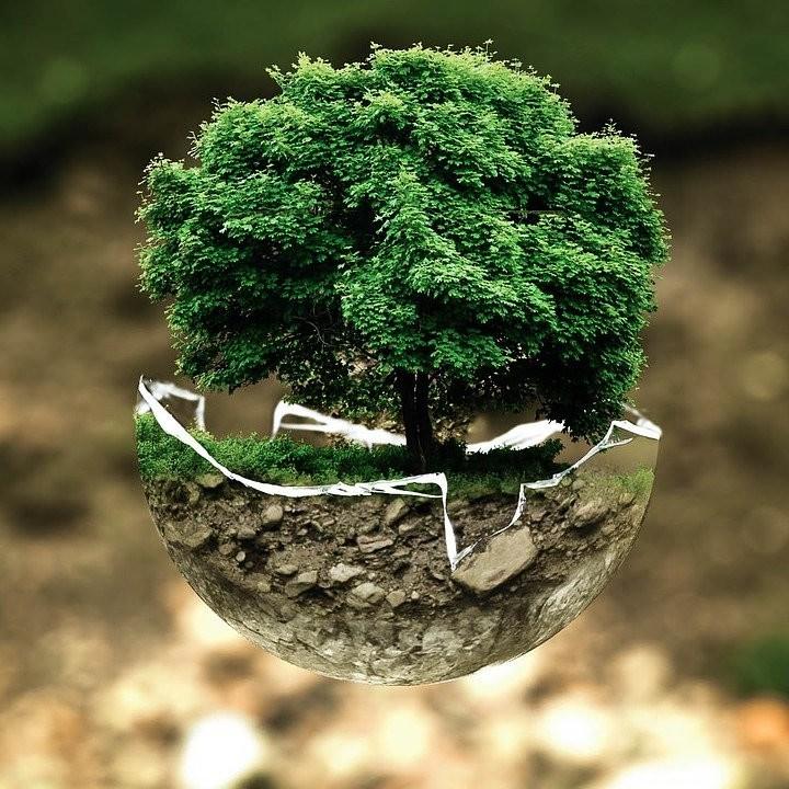 Coronaviurs ed ecologia, intervista a Pecoraro Scanio