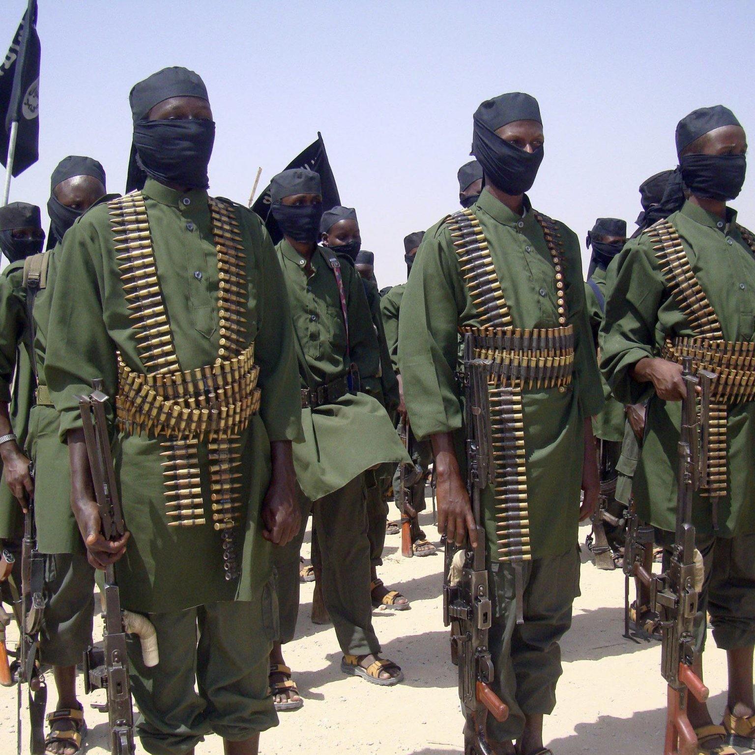 Gli Shabaab parlano e i grillini non capiscono