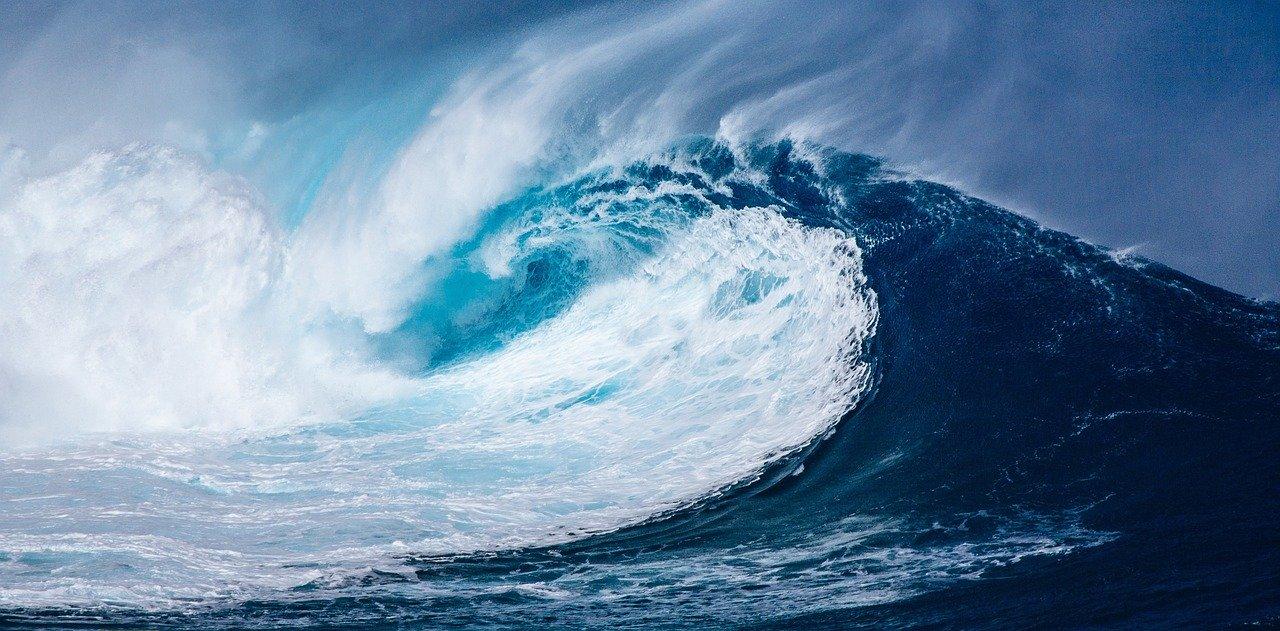Una politica europea per la difesa degli oceani