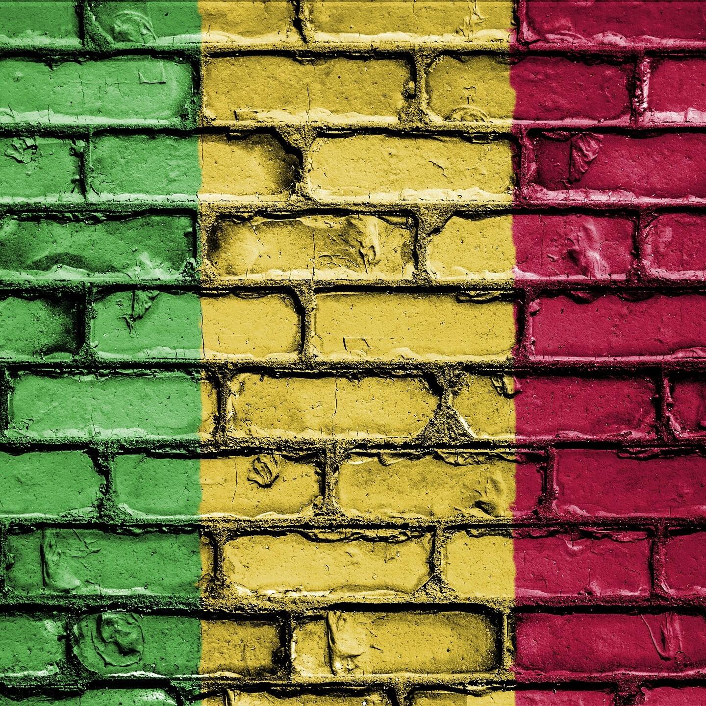 Il Mali di N'Daw, dopo il colpo di Stato